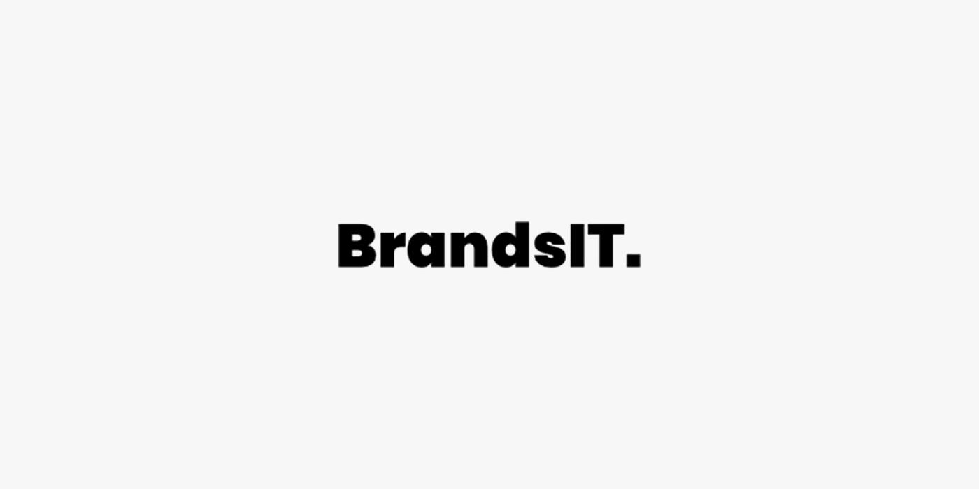 BrandsIT Testy LOG Plus